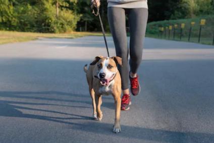 Implementa a tu vida diaria la actividad física.